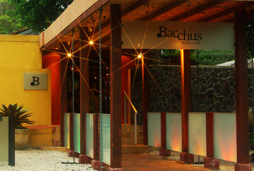 Image result for bacchus san jose