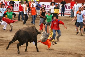 Costa Rica Bull Fights