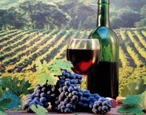 Photo image of wine
