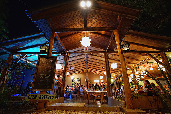 Image result for Dragonfly Bar & Grill tamarindo