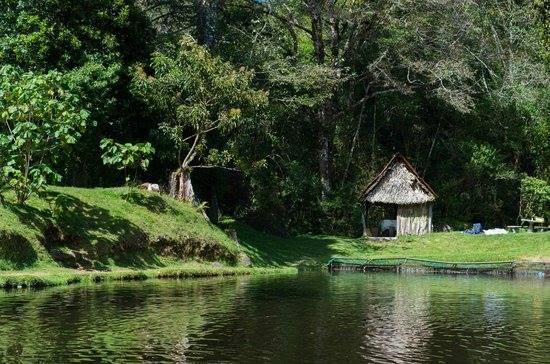 Caminata truchas selva madre pura vida guide costa rica for Como criar truchas en estanques