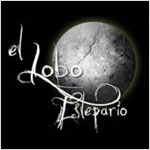 El Lobo Estepario Bar in Central San José