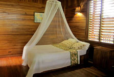 Kelly Creek Hotel in Cahuita