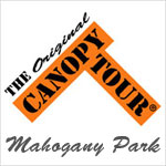The Original Canopy Tour in Mahogany Park, San José