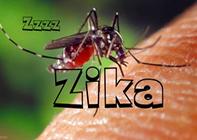 Zika Virus Update for Costa Rica