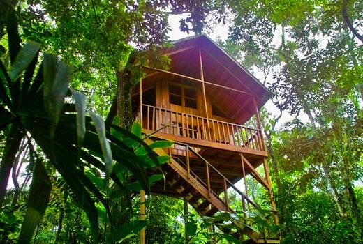 Tree Houses Hotel In La Fortuna Pura Vida Guide Costa Rica
